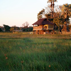 Okavango Delta Lodge