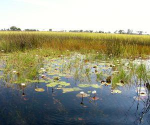 14-Day-Delta-and-Kruger-africanoverland201406271223061.JPG