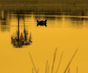 14-Day-Desert-and-Delta-africanoverland201406271235371.jpg