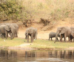 20-Day-Dar-es-Salaam-to-Delta-africanoverland201406270229021.JPG