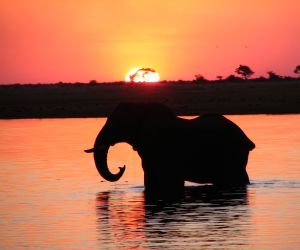 56-Day-Great-African-Trek-africanoverland201407090252401.JPG
