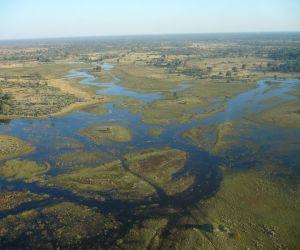 Okavango-Delta-africanoverland201407250206031.JPG