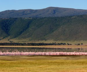 Serengeti-and-Ngorongoro-Crater-201407250210121.JPG